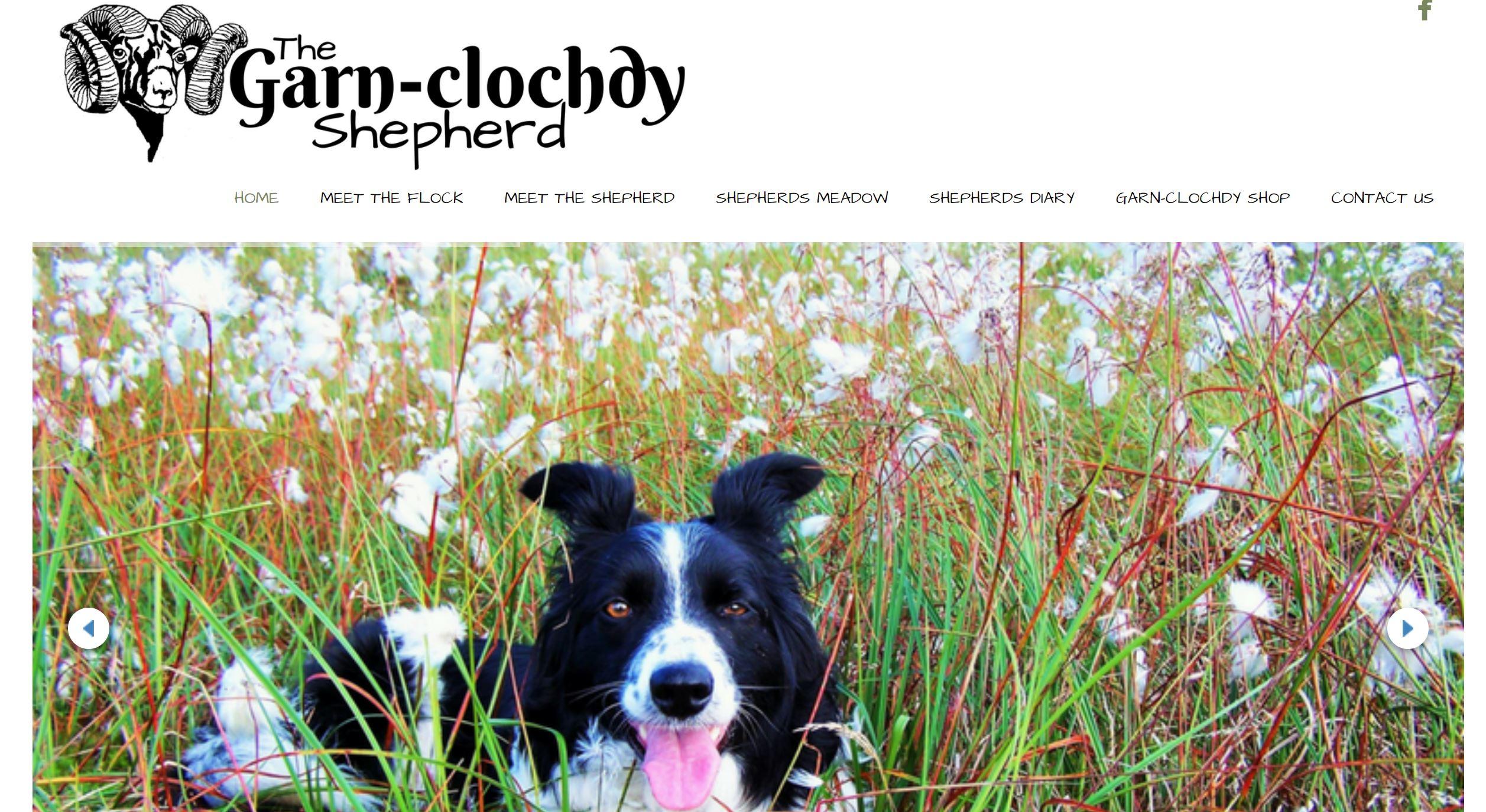 Website Snip Garnclochdy