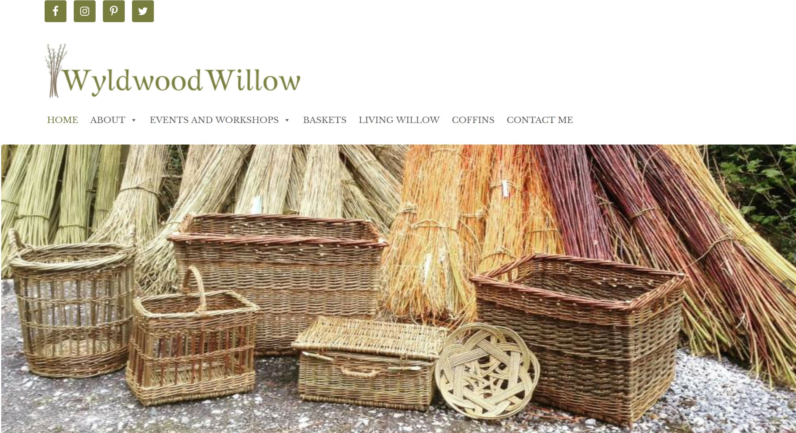 Wyldwood willow website snip